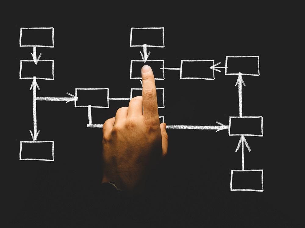 Modèle organisation management 2019